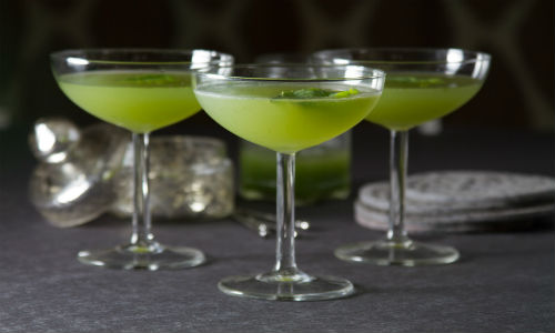 Albahaca martini