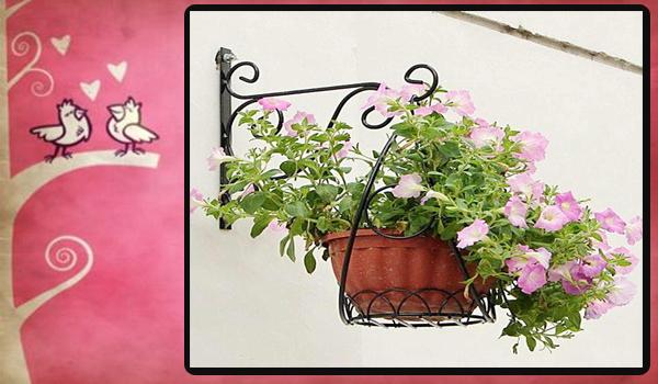 Planta para colgar en la pared