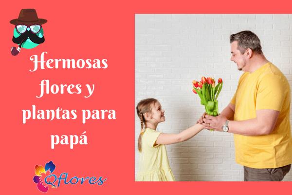 7 preciosas flores y plantas para que papá haga que su día sea alegre