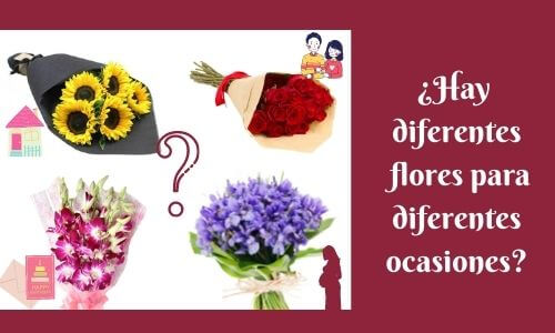 are there different flowers for different occasion