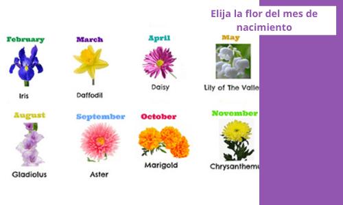 Elegir la flor del mes de nacimiento