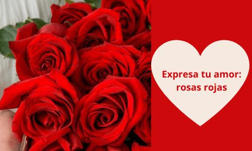 Expresa tu amor: rosas rojas