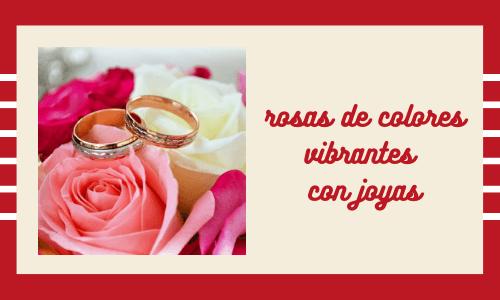 rosas de colores vibrantes con joyas