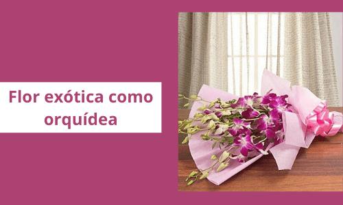 Orquídea similar a una flor exótica