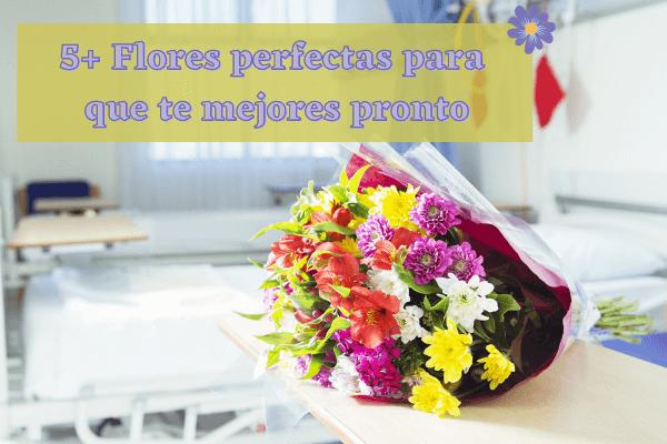 5+ Flores perfectas para recuperarse pronto para desear una pronta recuperación