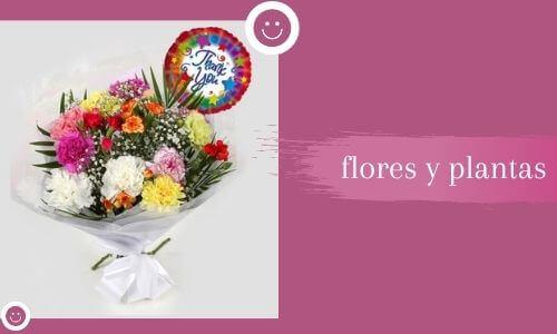 Gracias flores y plantas