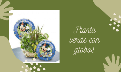 Plantas verdes con globos