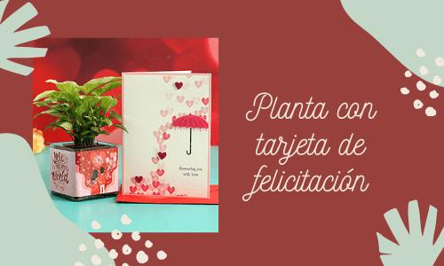 Plantas con tarjetas de felicitación